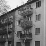 schuhmann-gross1